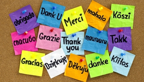 lithank-you-notes